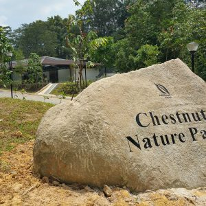 Chestnut-Nature-Park